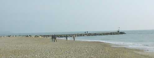The breakwater has caused the rebuilding of the beach at the easterly end of Hengistbury Head
